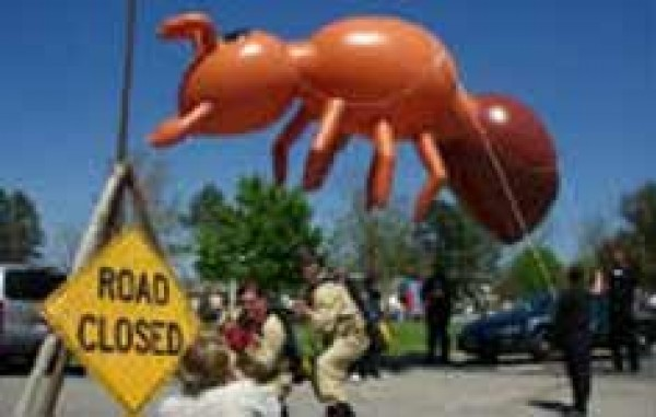 Insect Inflatable